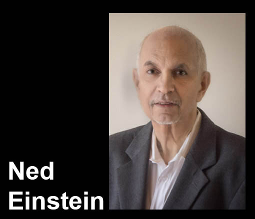 Ned Einstein Transportation accident expert witness